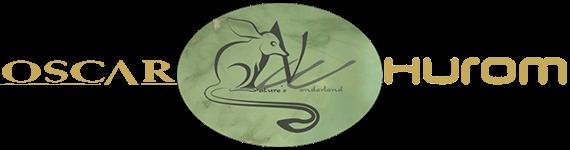 Natures Wonderland Logo